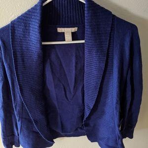 XS Banana Republic Wool/Cashmere Sweater, Blue